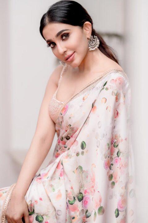 Parvati Nair saree photos