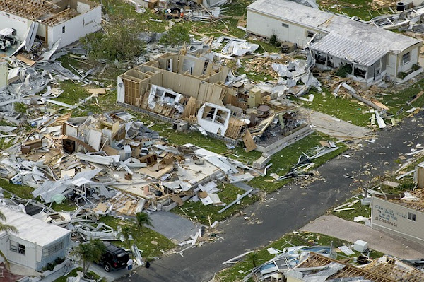 Steps involve to protect Social Life aftermath Disaster - Essay