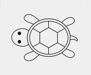 Cara Menggambar Kura - Kura - Cilacap Klik