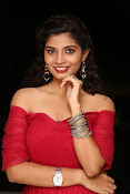 Bindhu latest sizzling photo gallery-thumbnail-8