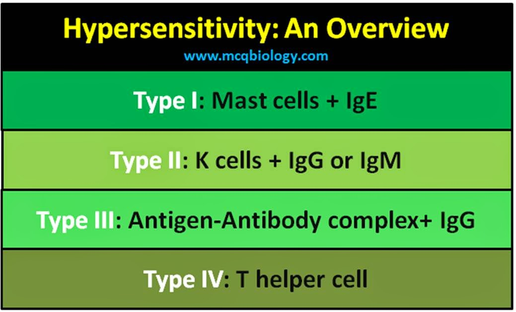 An overview on hypersensitivity