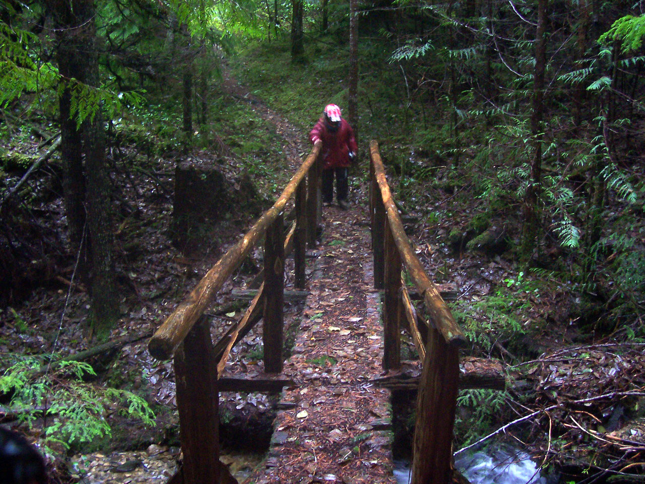 A Section Of The Sunshine Coast Trail