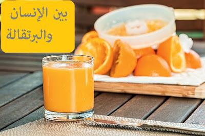 بين الإنسان والبرتقالة.