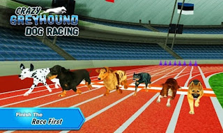 Crazy Dog Racing Mod Apk v2.2.9 For Android