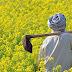 வேளாண் பட்டதாரிகளை பெற்ற ஏழை  விவசாயியின்    -பொங்கல் வாழ்த்து