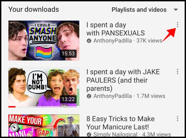 إعدادات تنزيل YouTube