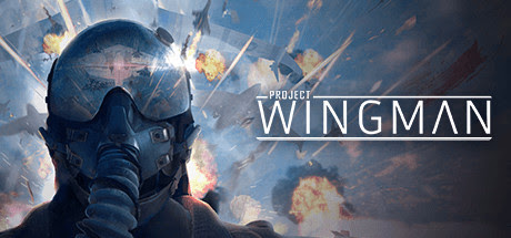 project-wingman-pc-cover