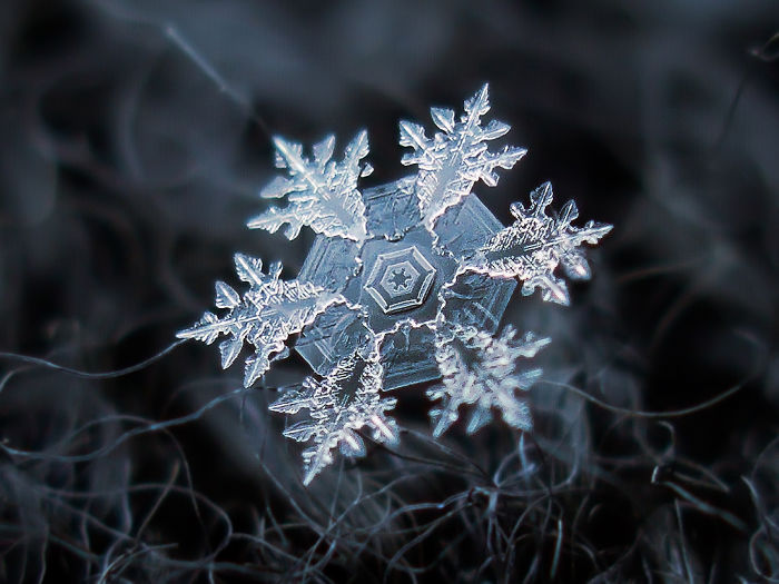 36 Unbelievable Pictures That Are Not Photoshopped - This Snowflake Center Looks Like The Star Wars Imperial Crest