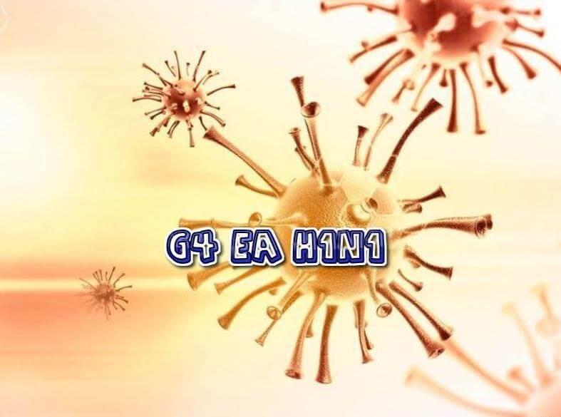 G4 EA H1N1