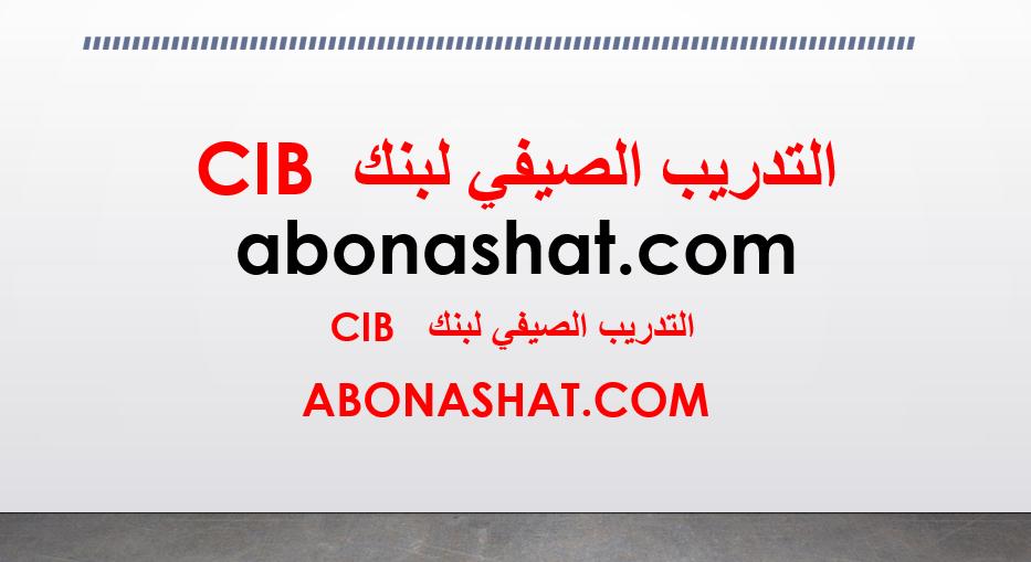 CIB Egypt Summer Internship  الصيفي  بنك cib  لطلاب جامعة الاسكندرية - قناه السويس - اسيوط - سوهاج