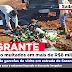 Funcionários de empresa são multados em mais de R$8 mil reais por descarte de garrafas de vidro em estrada de Sarandi