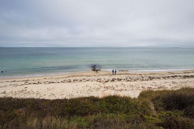 Ocean Ave (Seaview Ave)-Mrtha's Vineyard