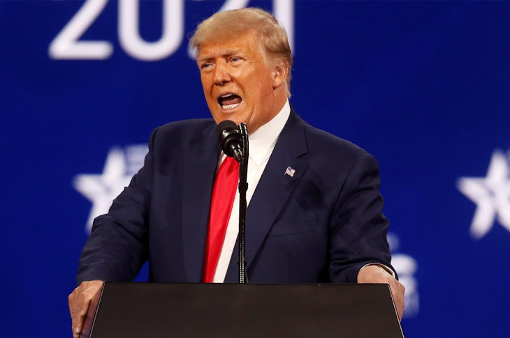 Trump Calls Mitch McConnell Dumb
