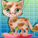 لعبة تنظيف القطة انجيلا