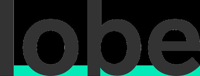 Microsoft Lobe will make image classification