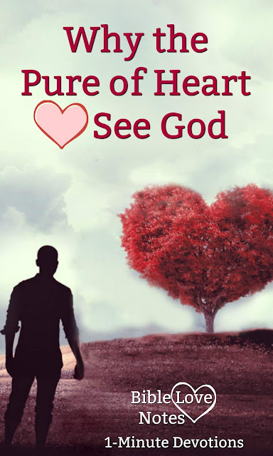 Matthew 5 says the pure in heart will see God. This 1-minute devotion explains what that means. #BibleLoveNotes #Bible