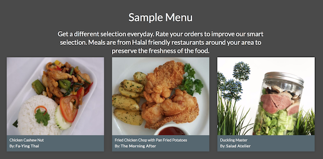 A screen capture of their sample menu taken off their site