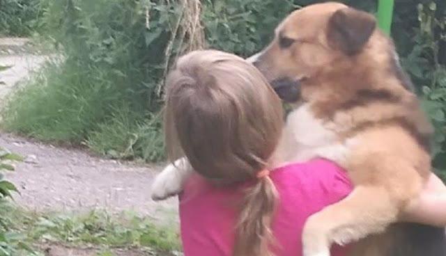 Дворовая собака не пожалела собственной жизни, но спасла детишек от гибели