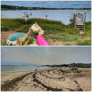 Shore lines in Cape Cod