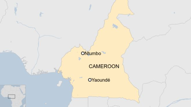 Children among 22 killed in attack on Cameroon village