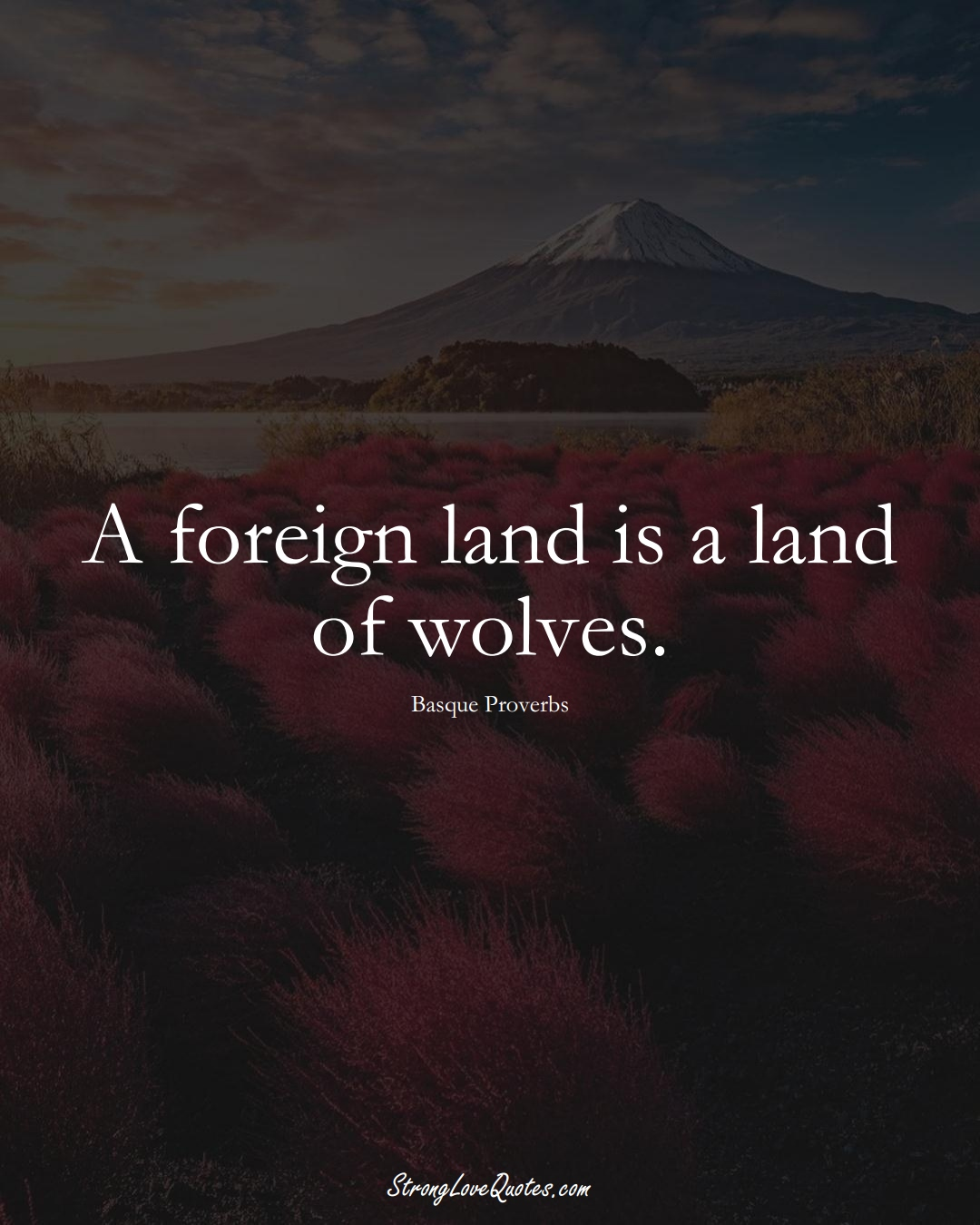A foreign land is a land of wolves. (Basque Sayings);  #EuropeanSayings