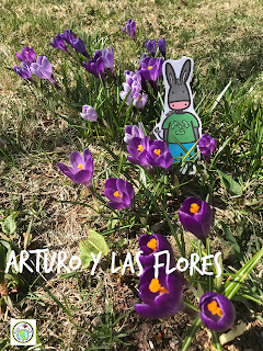 Picture Prompts for Distance Learning in World Language Spring Crocuses