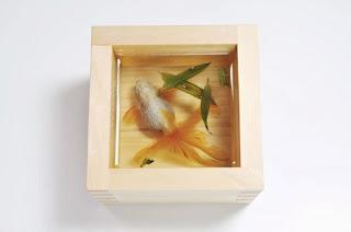 RIUSUKE FUKAHORI y su arte hiper-realista con resina cristal