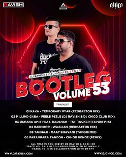 BOOTLEG VOLUME 53 (THE ALBUM ) - DJ RAVISH & DJ CHICO