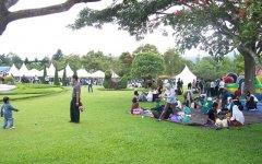 Lokasi Piknik