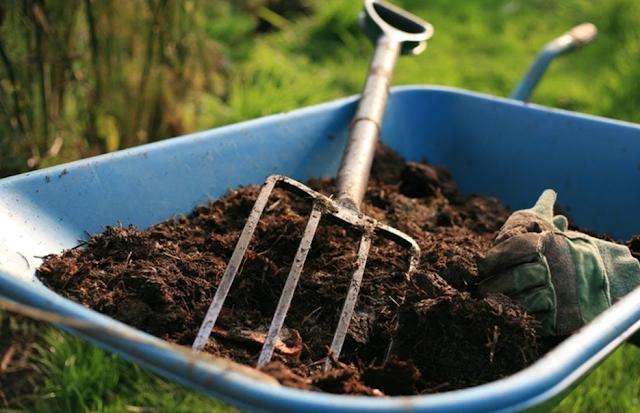 Cara Efektif Membuat Kompos Sederhana Dari Sampah Rumah Tangga