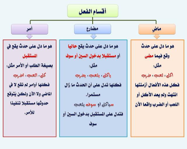 """انفراد.... كل قواعد اللغة العربية لطلاب """"ابتدائي - اعدادي - ثانوي"""" في صورة لوحات مبسطة مع الشرح والتدريبات 24"""