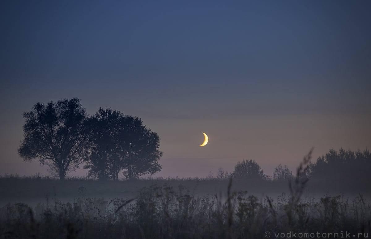 Ночное светопредставление