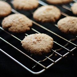 best vegan cookie recipe with coconut and sesame seeds