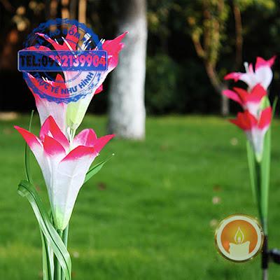 Hoa Lily phát sáng bằng năng lượng mặt trời