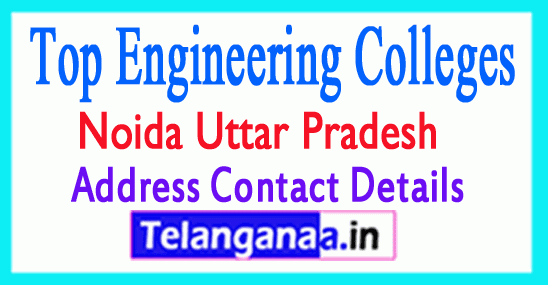 Top Engineering Colleges in Noida Uttar Pradesh