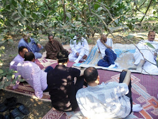 بركة السبع المنوفية ,الخوجة,ادارة بركة السبع التعليمية,لقاء المعلمين تحت الشجرة,الحسينى محمد