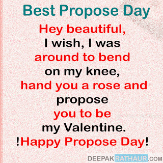 Hey beautiful, I wish I was around to bend on my knee, hand you a rose and propose you to be my Valentine.