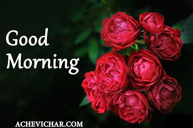 गुड मॉर्निंग इमेज, गुड मॉर्निंग फोटो, गुड मॉर्निंग वॉलपेपर,गुड मॉर्निंग फोटो फॉर व्हाट्सएप्प,गुड मॉर्निंग रोज इमेज,गुड मॉर्निंग लव इमेज,गुड मॉर्निंग पिछ,good morning images,good morning pic,good morning photo,good morning wallpaper,good morning images with quotes,Good morning pic