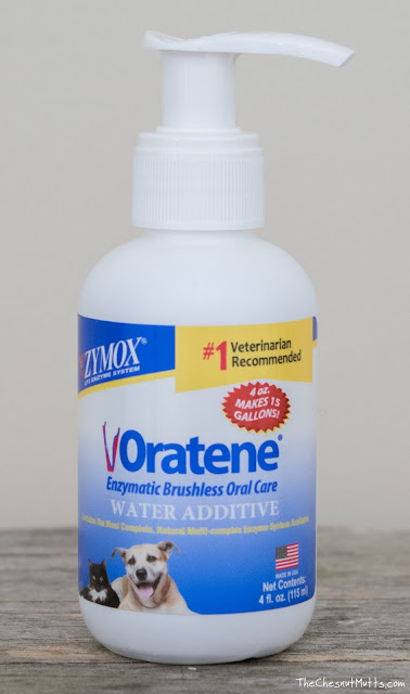 Oratene Water Additive for easy dog dental care