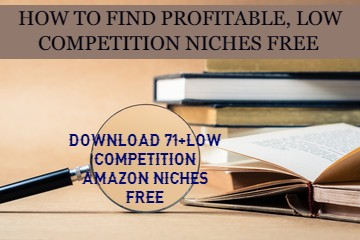 LOW-COMPETITION-NICHES