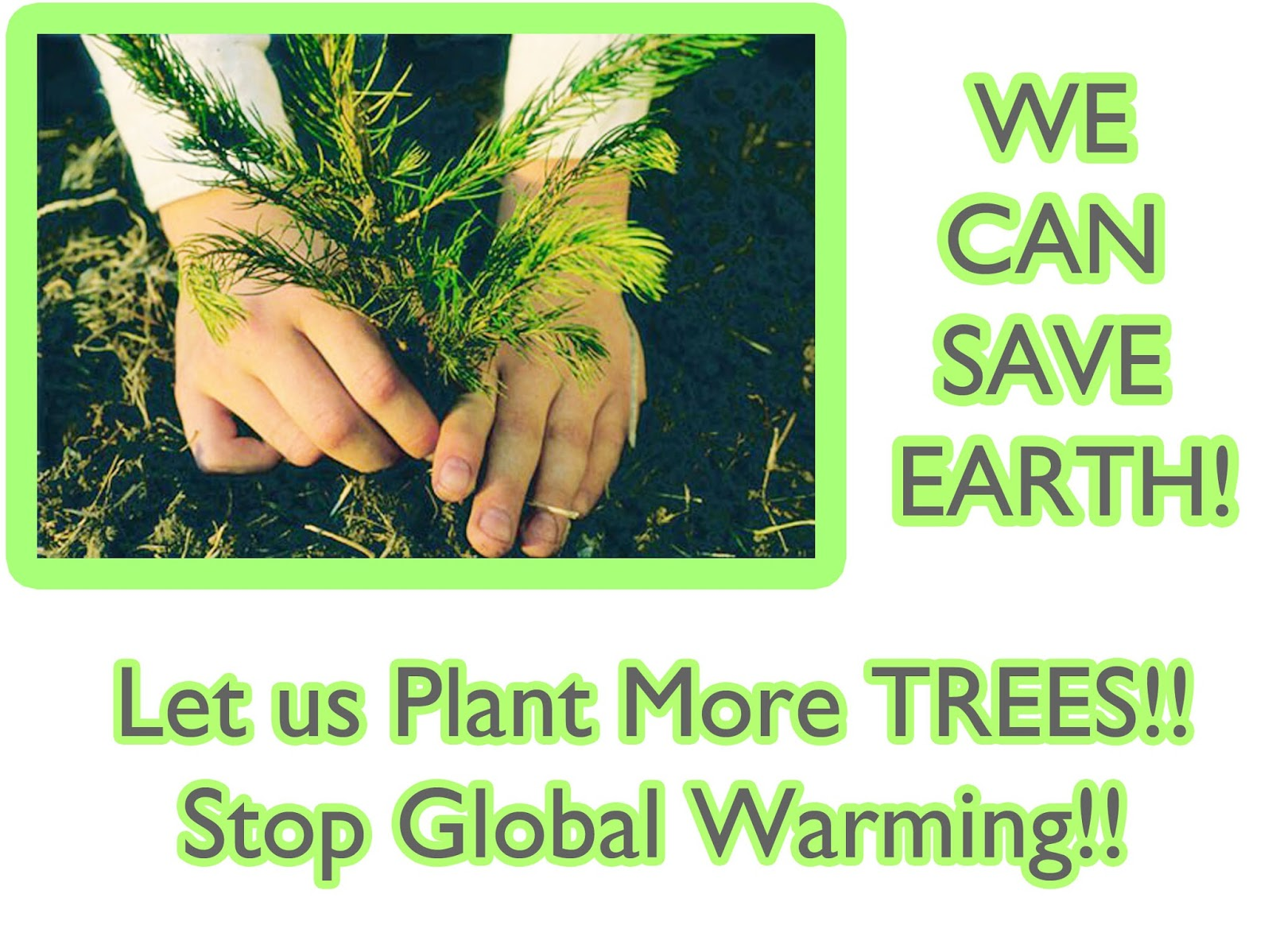 Plant a trees and save the earth essay