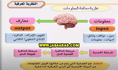 النظرية المعرفية