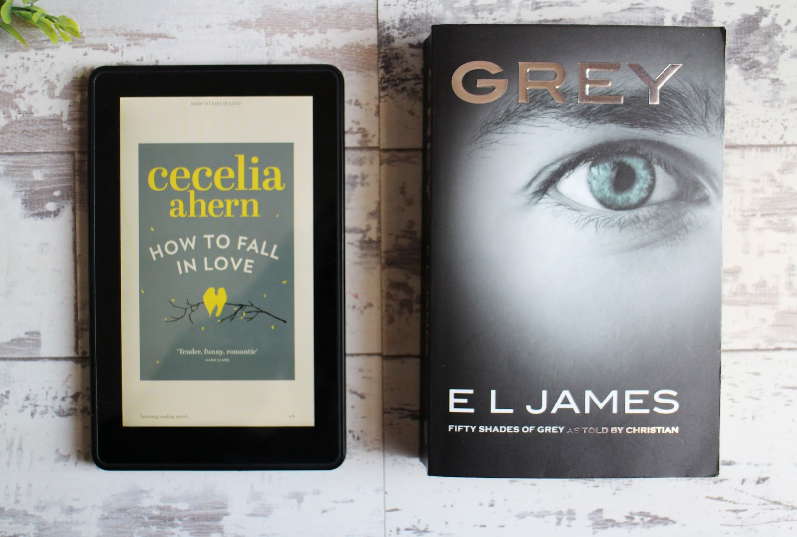 Recently Read #21 | December & January