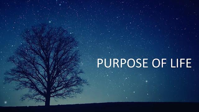 cara menemukan tujuan hidup motivasi penting