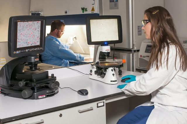علاج سرطان البروستاتا