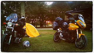 Hades and Bumblebee at sunset in Farr Park