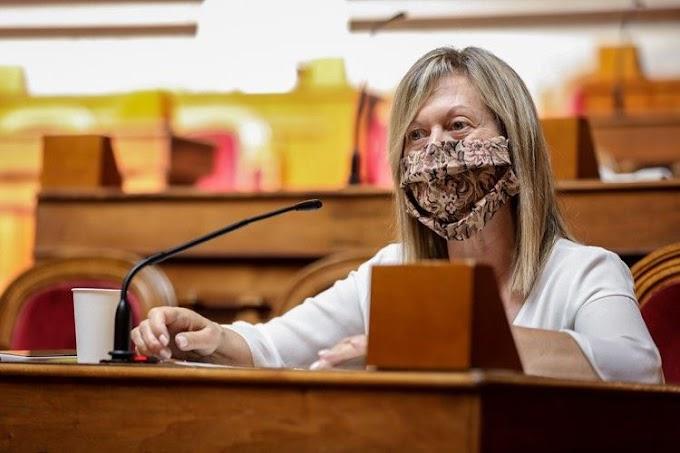 Deputadas do PSD e CDS utilizam máscaras em homenagem à Tauromaquia
