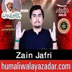 https://aliwalayazadar.blogspot.com/2020/08/zain-jafri-nohay-2021.html