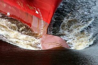 haluan dan buritan kapal