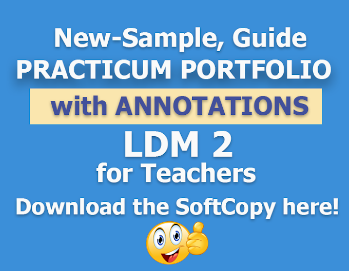 New Sample, Guide of Practicum Portfolio with Annotations for LDM2 (Free Download)